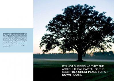 Moultrie Brochure